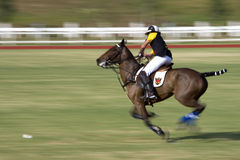 Malaysian Open Polo Action (Blurred) Royalty Free Stock Photos