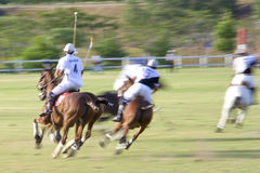 Malaysian Open Polo Action (Blurred) Royalty Free Stock Photo