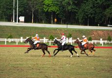 Malaysian Open Polo Tournament 2011 Stock Photography