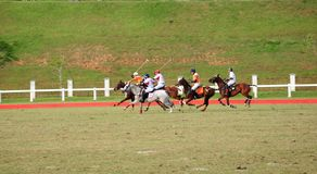 Malaysian Open Polo Tournament 2011 Royalty Free Stock Photos