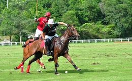 Malaysian Open Polo Tournament 2015 Royalty Free Stock Photography