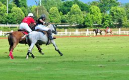Malaysian Open Polo Tournament 2015 Royalty Free Stock Images