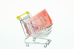 Malaysian ringgit in shopping cart Stock Image