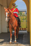 Malaysian Royal Palace Guard Stock Images
