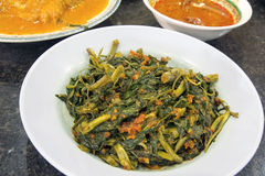 Malaysian Sambal Chili Kangkong Stock Photos