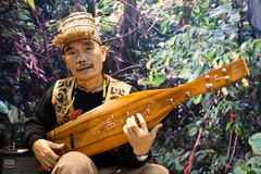 Malaysian sape player at BIT 2012. Milan, Italy - February  17: Malaysian player performs at BIT International Tourism Exchange on february 17, 2012 in Milan Royalty Free Stock Image