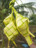Malaysian Traditional Food, Ketupat. It is famous during celebration ceremony Royalty Free Stock Photo