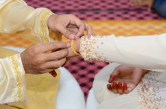 Malaysian Wedding Culture Royalty Free Stock Images