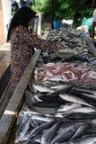 Malaysisches Mädchen, das Fische verkauft Lizenzfreie Stockbilder