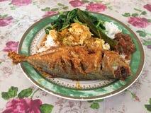 Malaysisk blandad ris- eller `-Nasi Campur ` tjänade som på en plast- platta Arkivfoton