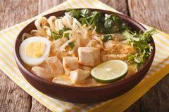 Malaysisk laksasoppa med fegt slut upp i en bunke horisontal royaltyfria bilder