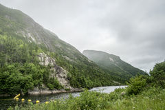 Malbaie River National Park Royalty Free Stock Photography