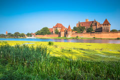 Malbork Castle in Poland medieval fortress built by the Teutonic Stock Photography