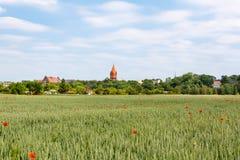 Malbork slott i den Pomerania regionen, Polen royaltyfria bilder