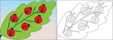 Malbuch für Kinder Marienkäferkarikatur auf Blatt vektor abbildung