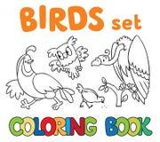 Malbuch mit Vögeln Lizenzfreie Stockfotos