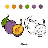 Malbuch: Obst und Gemüse (Pflaume) vektor abbildung