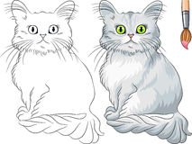 Malbuch von Tiffany-Katze Lizenzfreie Stockfotografie