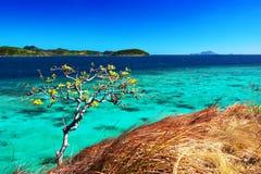 Malcapuya - vista della scogliera Immagine Stock Libera da Diritti