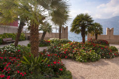 Malcesine Garden on Lake Garda Stock Photos