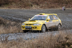 Malcolm Wilson Rally 2010 Royalty Free Stock Photos