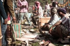 Malda v?stra Bengal Indien Maj 2018 - sikt av fiskmarknaden i gatan av en by arkivbild