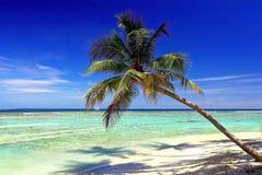 Maldivaes Royalty Free Stock Images