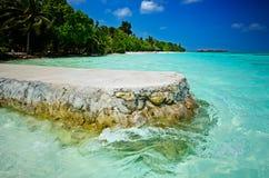 Maldivas Palm Beach Fotografia de Stock Royalty Free