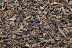 Maldive fish chips, Sri Lankan food Stock Photography
