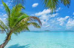 Maldiverna Royaltyfri Fotografi