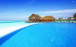 Maldiverna enorm plats Royaltyfria Foton