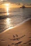Maldiverna solnedgång Arkivbilder