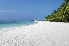 Maldiverna strand Royaltyfri Bild