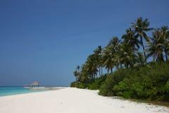 Maldiverna strand Fotografering för Bildbyråer