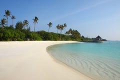 Maldiverna strand Royaltyfri Foto