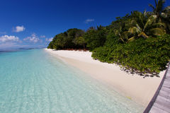 Maldiverna strand Arkivfoto