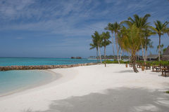 Maldives 13. The beautiful white sand beaches of the Maldives Royalty Free Stock Image