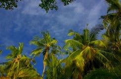 Maldives imagen de archivo