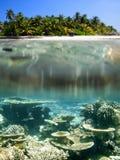 Maldives. Ellaidhoo, North Ari Atoll, Maldives Stock Photography