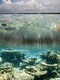 Maldives. Ellaidhoo, North Ari Atoll, Maldives Stock Image