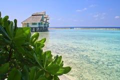 Maldives. Ellaidhoo, North Ari Atoll, Maldives Stock Images