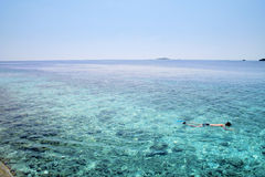 Maldives. Snorkeling on the barrier reef at Maldives Royalty Free Stock Photography