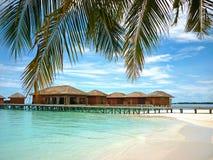 maldives Royalty-vrije Stock Foto