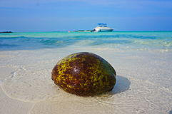 maldives Stock Afbeelding