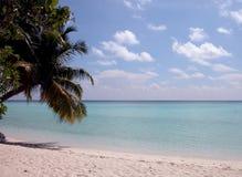 Maldives fotos de stock royalty free
