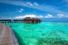 maldives foto de archivo