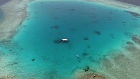 Maldives aerial view stock video
