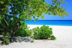 Maldives: Arena blanca y océano azul Imagen de archivo libre de regalías