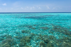 maldives Ari Atoll imagen de archivo libre de regalías