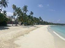 Dream Beach - Maldives Royalty Free Stock Image
